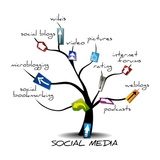 Check Out Our Social Media tree of Life